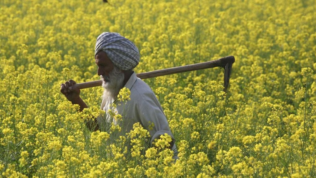Rise in agri prices, here's what it means according to former agri secy Siraj Hussain
