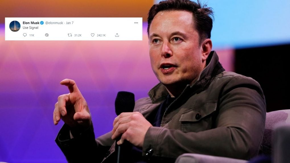 Elon Musk compares chip shortage to toilet paper in the pandemic, says it's affecting Tesla