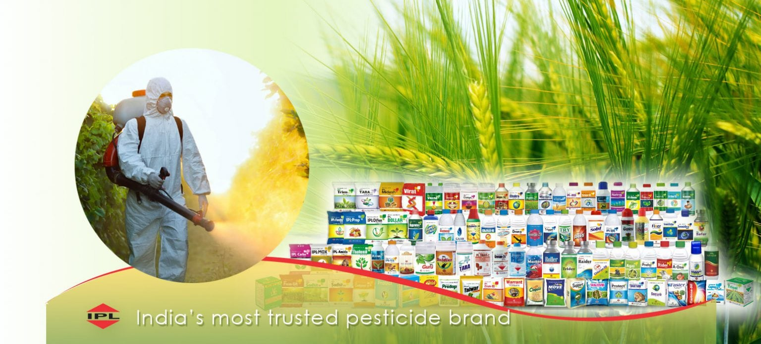 India Pesticides    The company's shares will get listed on the exchanges today. The issue price was fixed at Rs 296 per share.