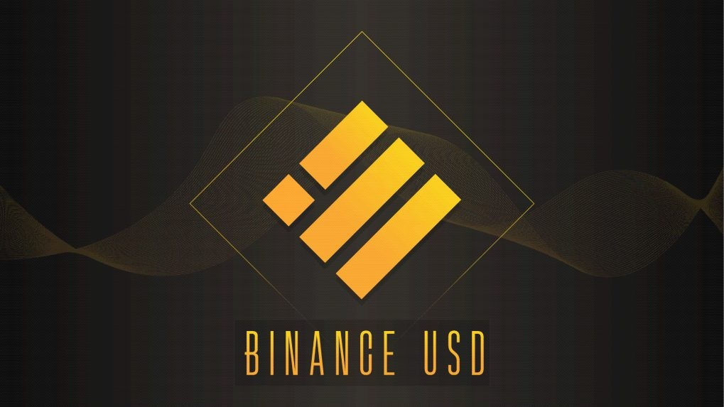 ED probes crypto exchange Binance's role in money laundering case: Report